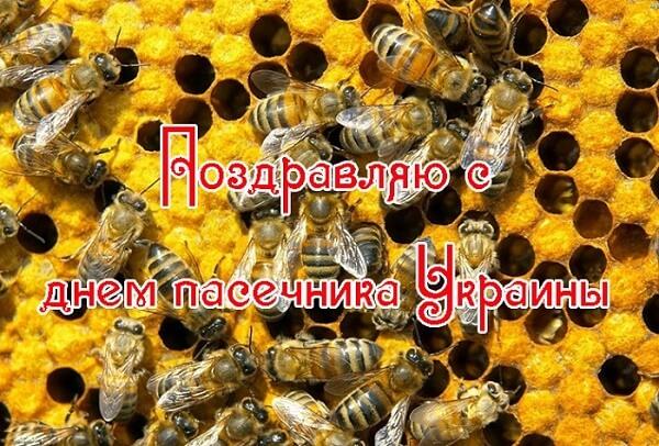 Поздравления с Днем пасечника Украины