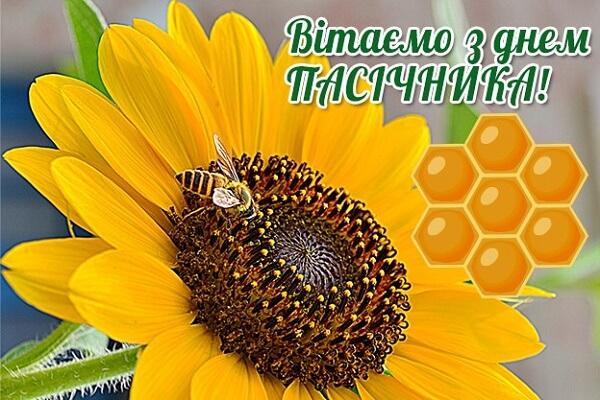Привітання з Днем пасічника України