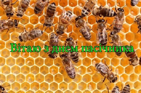 Привітання з Днем бджоляра України
