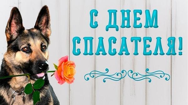 День спасателя Украины 2020