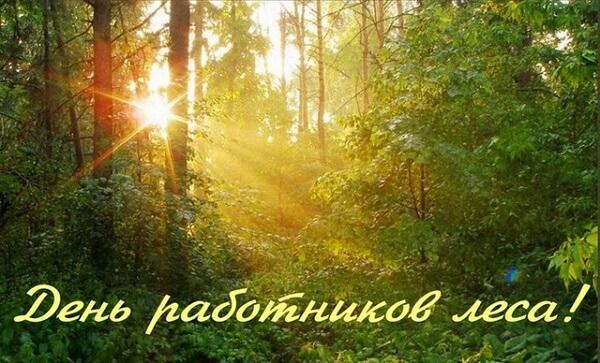 Поздравления с Днем работников леса