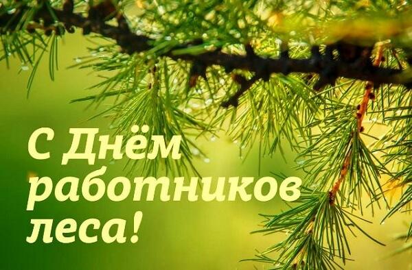 День работников леса 2020