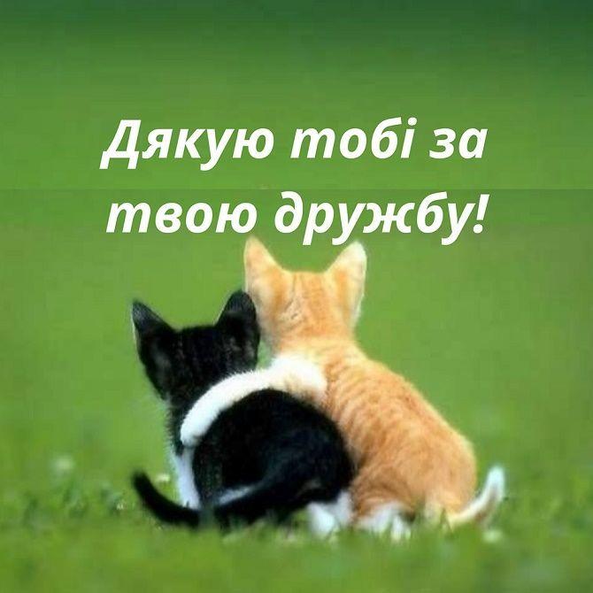 Всесвітній день домашніх тварин  привітання в прозі