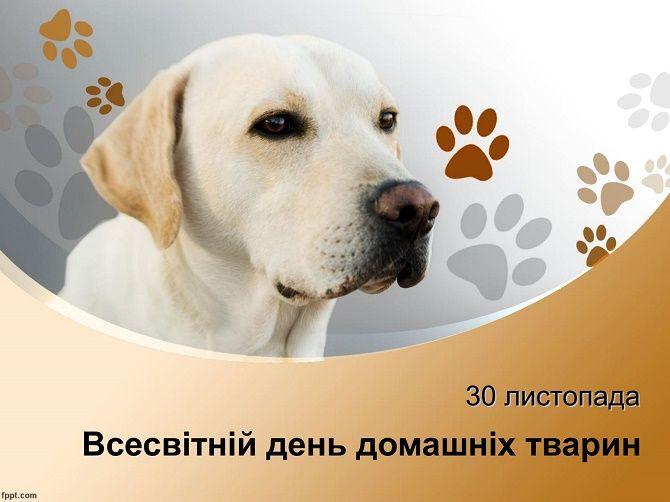 Всесвітній день домашніх тварин  привітання в віршах